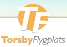 Bildresultat för torsby flygplats logga